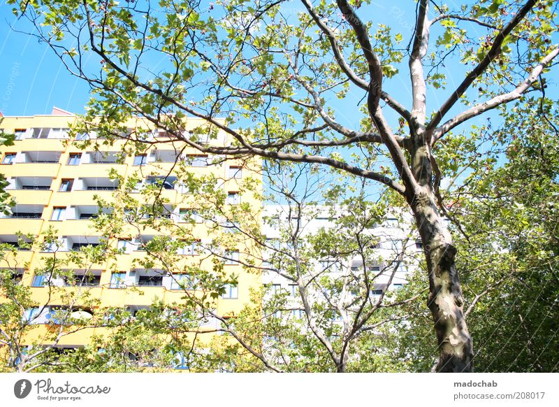Märkisches Viertel Lifestyle Style Environment Nature Landscape Tree Berlin House (Residential Structure) High-rise Building Architecture Facade Modern