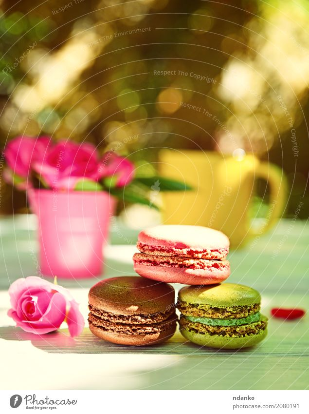 Three multi-colored almond macaroons Colour Green White Flower Eating Yellow Wood Brown Pink Bright Table Blossoming Photography Coffee France Bouquet