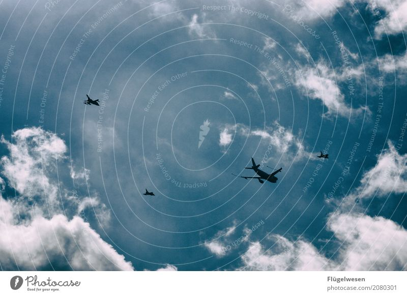 Sky Vacation & Travel Clouds Flying Aviation Climate Airplane Fear of flying Airplane takeoff Airplane landing Floating Airport War Flight of the birds Engines