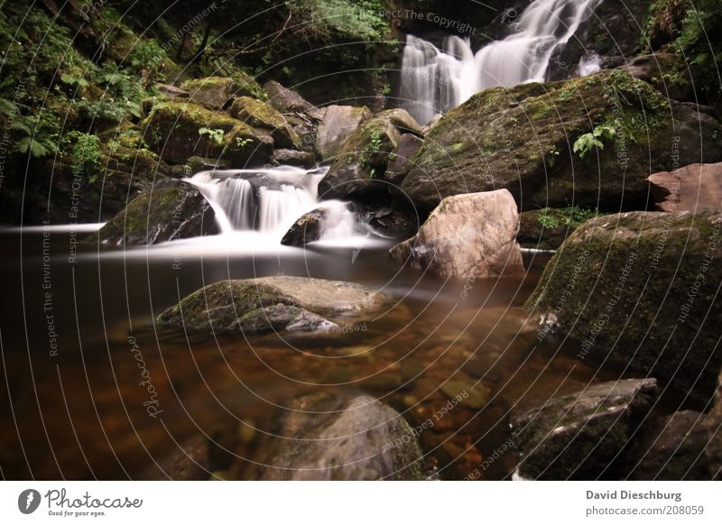 Killarney waterfalls Life Relaxation Calm Vacation & Travel Mountain Nature Landscape Plant Water Spring Summer Moss Rock River bank Waterfall Green White