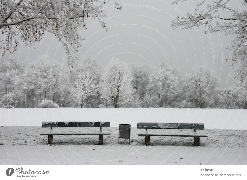 wait for summer Nature Winter Park Meadow Forest Bench Trash container Loneliness Calm Gray Symmetry Frost Colour photo Subdued colour Exterior shot Deserted
