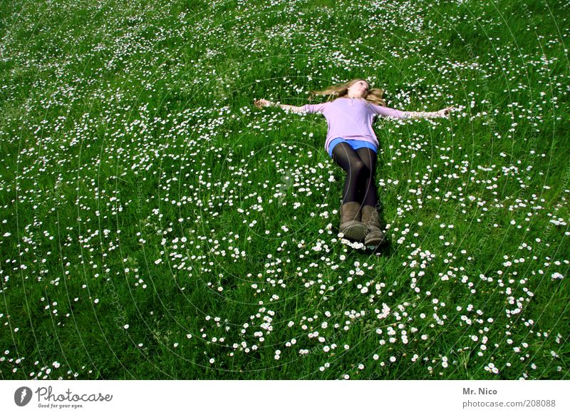 Nature Youth (Young adults) Green Plant Calm Relaxation Meadow Feminine Grass Happy Dream Blonde Pink Environment Posture Lie