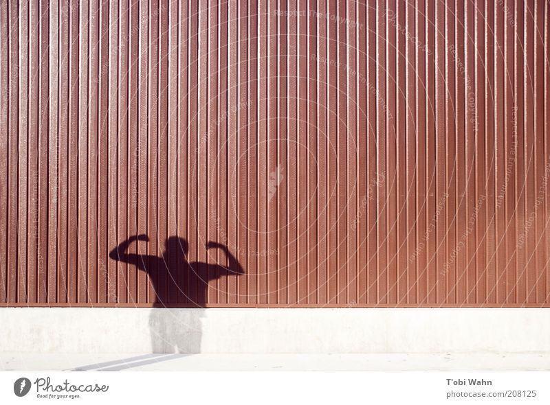 Human being Wall (building) Line Power Arm Might Stripe Posture Strong Hero Musculature Impressive Shadow play Boast Light