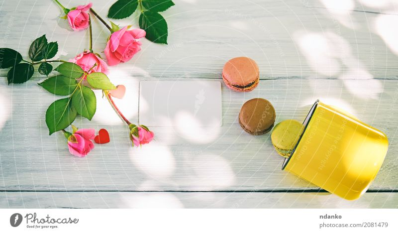 macaroons and a yellow cup Colour Green White Flower Yellow Wood Pink Bright Table Photography Easter France Bouquet Candy Tradition Dessert