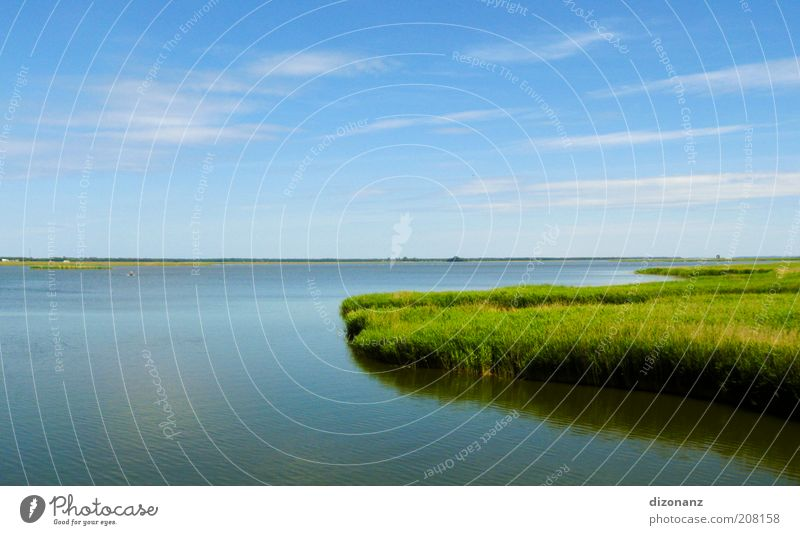 Nature Water Beautiful Sky Green Blue Plant Summer Calm Clouds Far-off places Grass Landscape Coast Wet Large