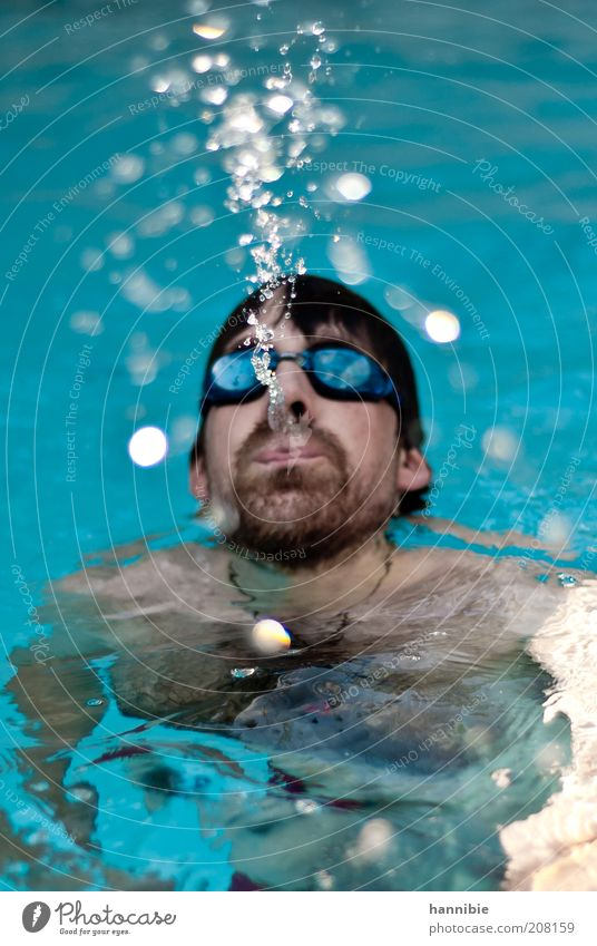 Human being Man Blue Summer Head Adults Masculine Drops of water Wet Swimming pool Leisure and hobbies Swimming & Bathing Facial hair Portrait photograph