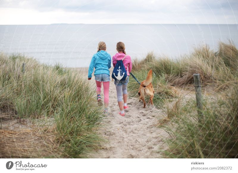 Beach walk ii Human being Child Girl Brothers and sisters Sister Family & Relations Infancy 2 Environment Nature Landscape Baltic Sea Animal Pet Dog 1 Discover