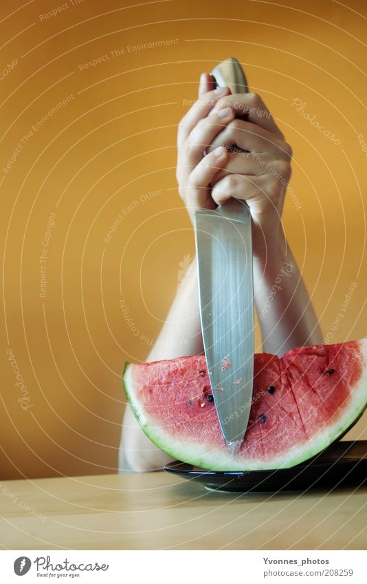 Attack! Food Fruit Nutrition Eating Organic produce Vegetarian diet Diet Melon Water melon Knives Human being Hand Threat Power Might Dangerous Voracious Anger