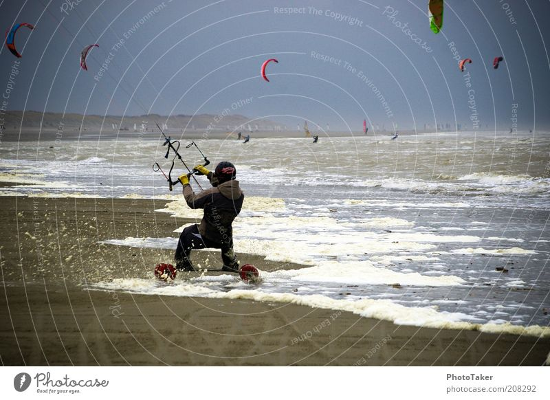kite land boarding Sports Aquatics Kiting Kiter Kiteboard Water Sky Storm clouds Bad weather Wind Gale Beach North Sea Ocean Driving Fitness Athletic