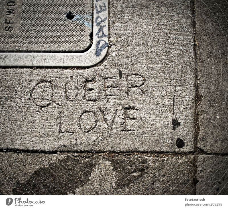 Queer Love Subculture Homosexual Emotions Joie de vivre (Vitality) Tolerant Sidewalk Cement Stone slab Stone floor Seam Furrow queer'r love Gully Gray Gloomy