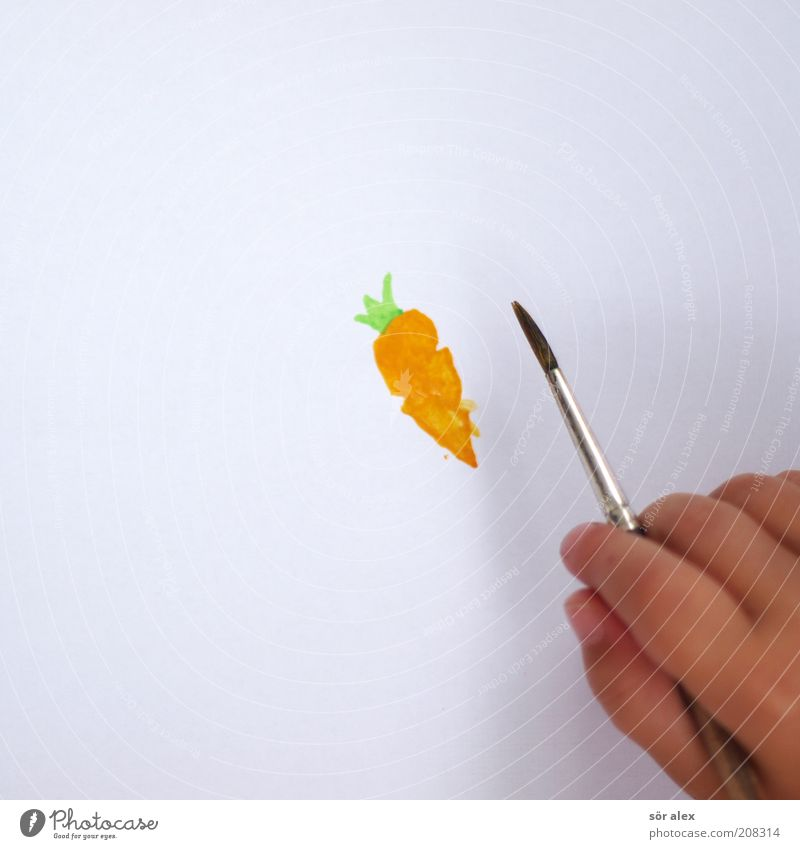 carrot Food Vegetable Nutrition Eating Organic produce Vegetarian diet Carrot Paintbrush Paper Watercolor Brush handle Beautiful Green White Colour Serene