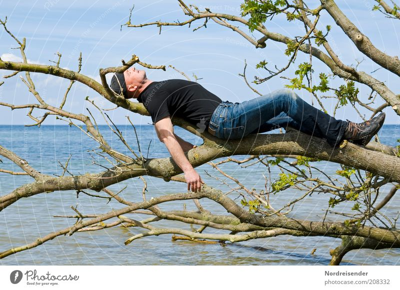 Man relaxes on a tree on the beach of the Baltic Sea Lifestyle Style Joy Healthy Wellness Harmonious Well-being Contentment Relaxation Vacation & Travel