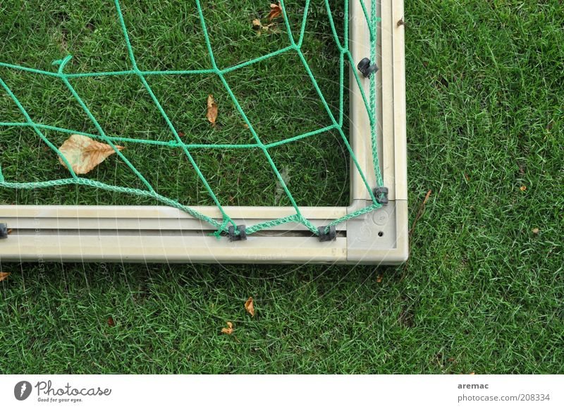 summer break Sports Ball sports Soccer Goal Sporting Complex Football pitch Summer Grass Green Calm Colour photo Exterior shot Close-up Deserted