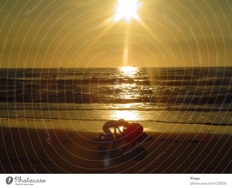 gold-rush atmosphere Colour photo Exterior shot Evening Sunrise Sunset Back-light Joy Children's game Summer Beach Ocean Brothers and sisters Sand Water