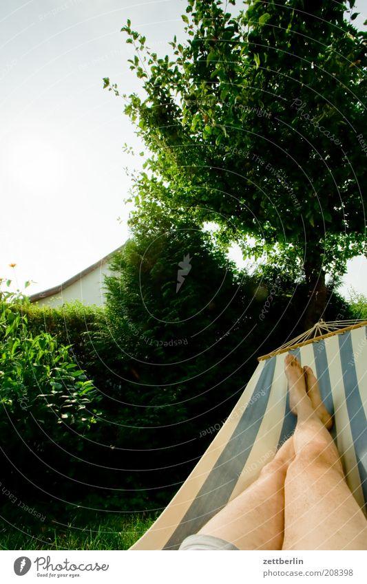 Human being Man Tree Vacation & Travel Calm Relaxation Garden Feet Legs Adults Sleep Lie Tree trunk Hedge Apple tree Hammock
