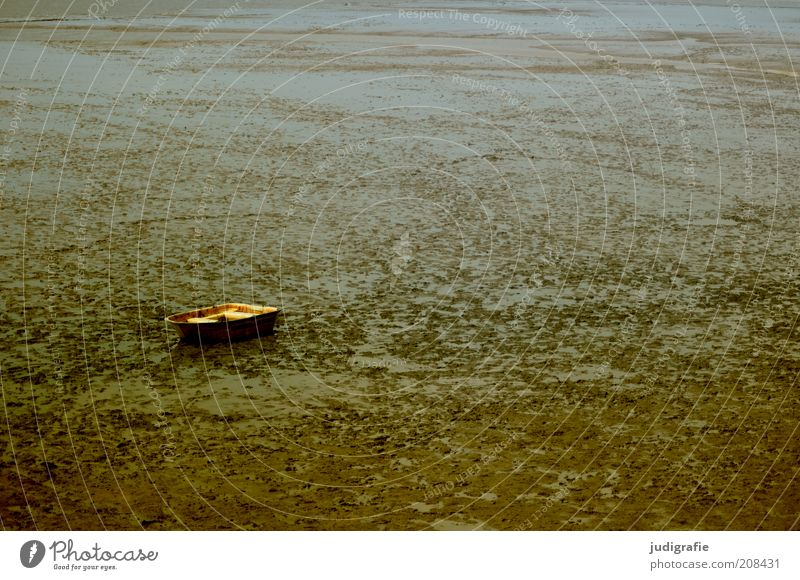 Nature Calm Loneliness Far-off places Dark Sadness Landscape Moody Brown Coast Environment Dry North Sea Stagnating Rowboat Boating trip