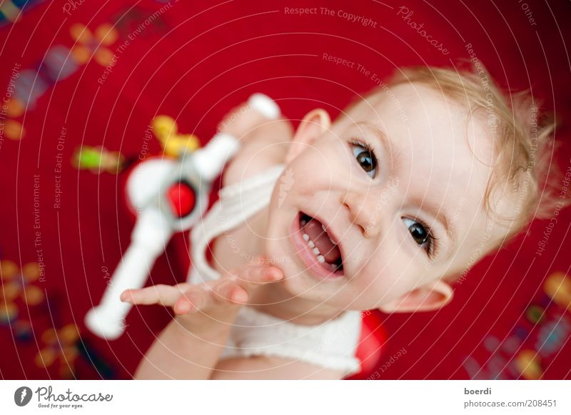 thin Playing Child Girl Head Face 1 - 3 years Toddler Toys Smiling Laughter Looking Brash Happiness Funny Red Moody Joy Joie de vivre (Vitality) Enthusiasm Life