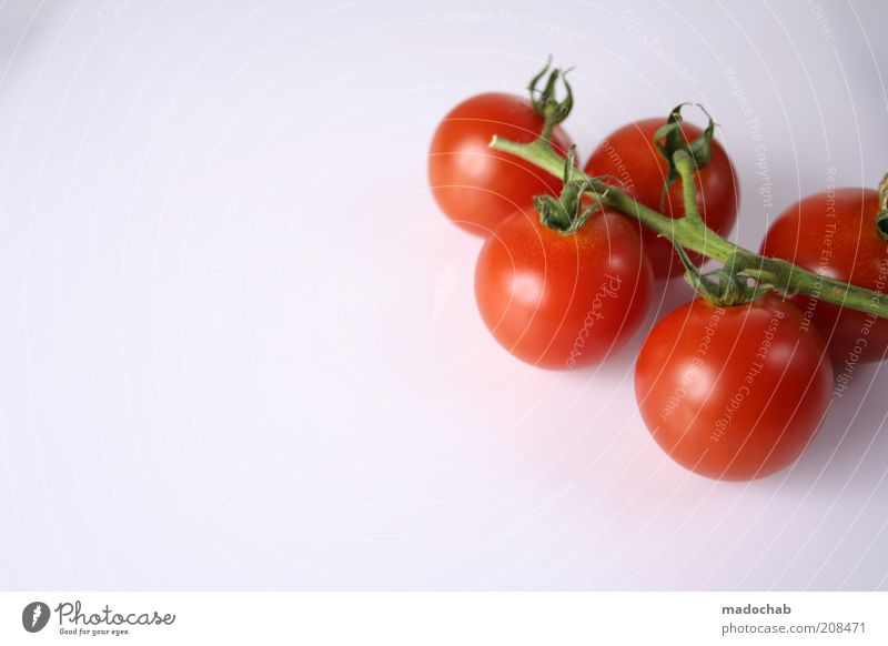 Nature Red Plant Life Healthy Food Nutrition Round Vegetable Stalk Delicious Twig Mature Organic produce Diet Tomato
