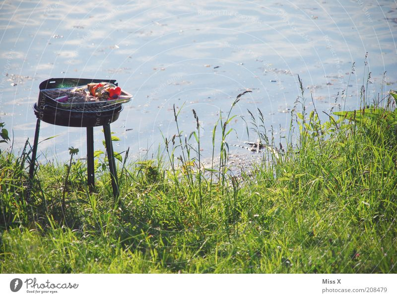 Vacation & Travel Nutrition Meadow Party Garden Lake Park Feasts & Celebrations Food Trip Delicious Barbecue (event) Camping Meat Pond Picnic