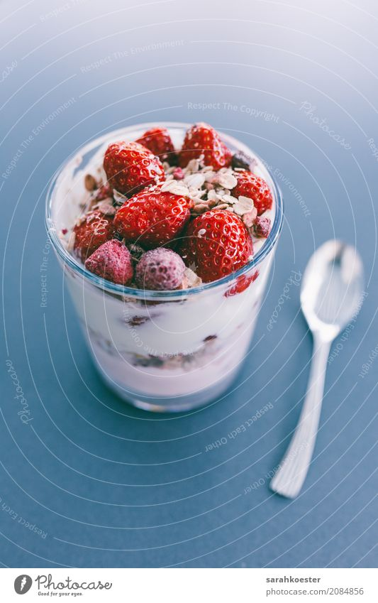 Frischer Erdbeerquark Food Yoghurt Fruit Candy Strawberry Vegetarian diet Dessert Bowl Joy Healthy Healthy Eating Fitness Sports Training Diet Feeding To enjoy