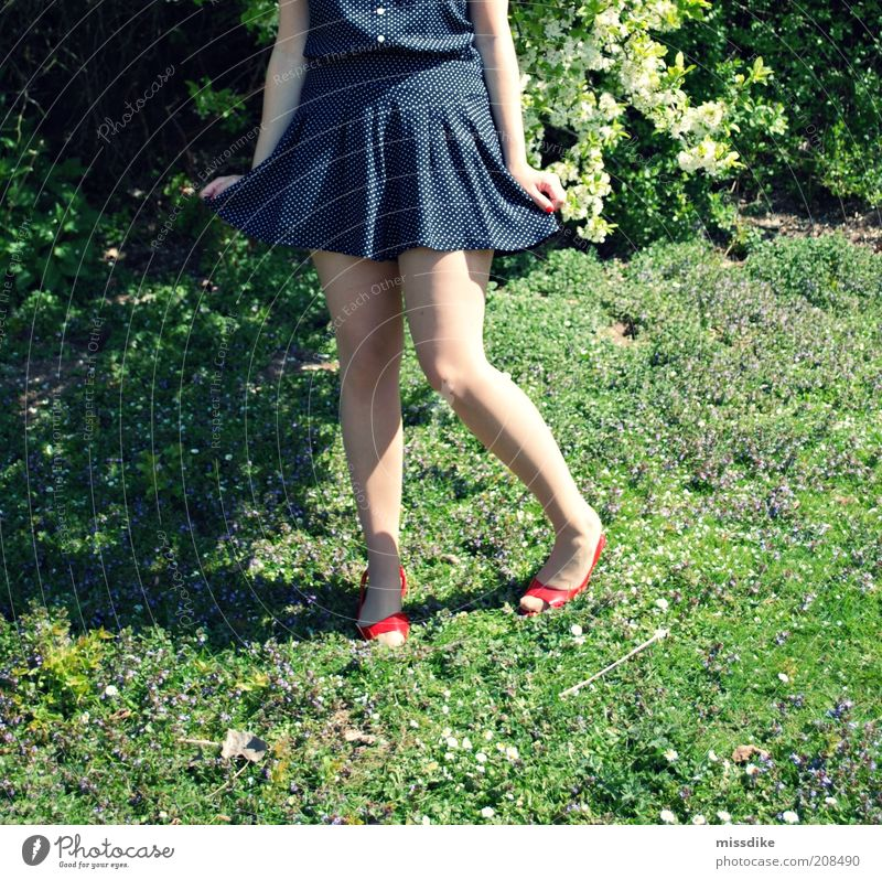 rock on Feminine Young woman Youth (Young adults) Legs 1 Human being 18 - 30 years Adults Rockabilly Retro Nature Plant Spring Beautiful weather Flower Grass