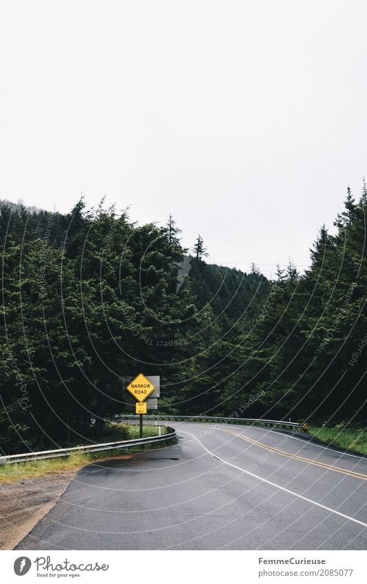 Roadtrip West Coast USA (73) Nature Landscape Lanes & trails Transport Traffic infrastructure Infrastructure Street sign Tree Forest Roadside Curve Sky Clouds