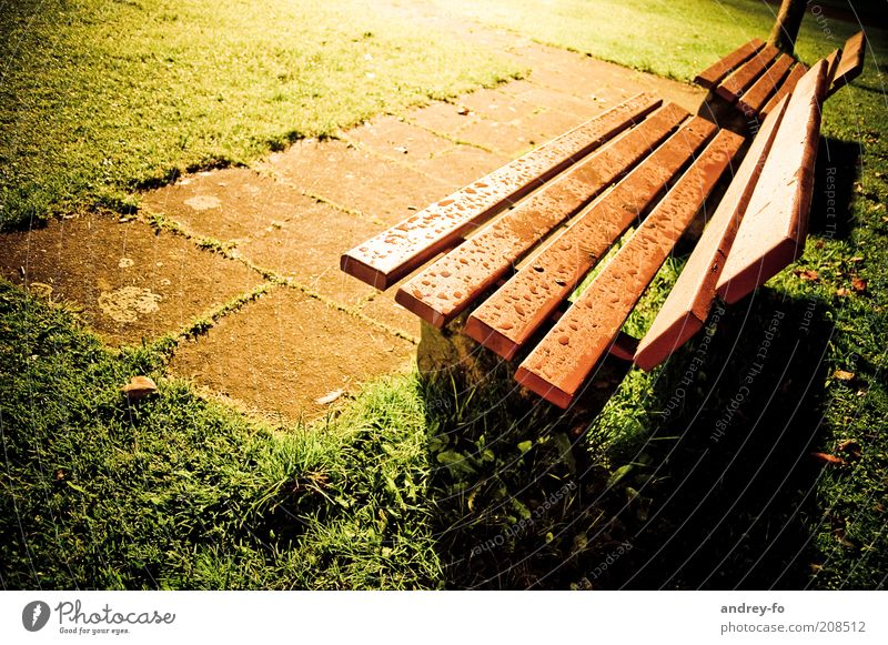 bench Park Bench Seating Night shot Evening Colour photo Exterior shot Calm Rain Drops of water Wet Damp Meadow Wooden bench 2 Stone floor Dusk Empty Free Flare