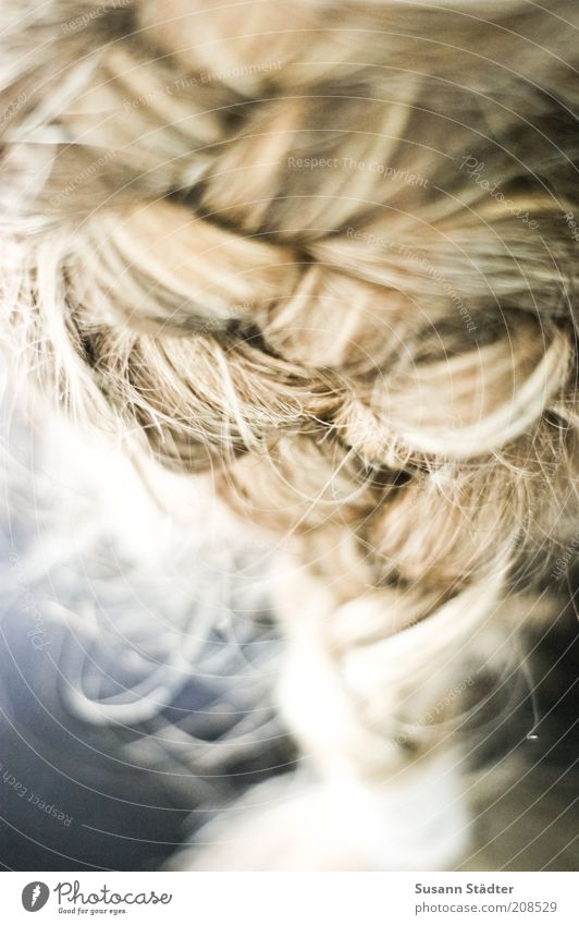Beautiful Hair and hairstyles Blonde Network Hair Natural Cute Jewellery Curl Attachment Braids Part Strand of hair Bond Human being Plaited