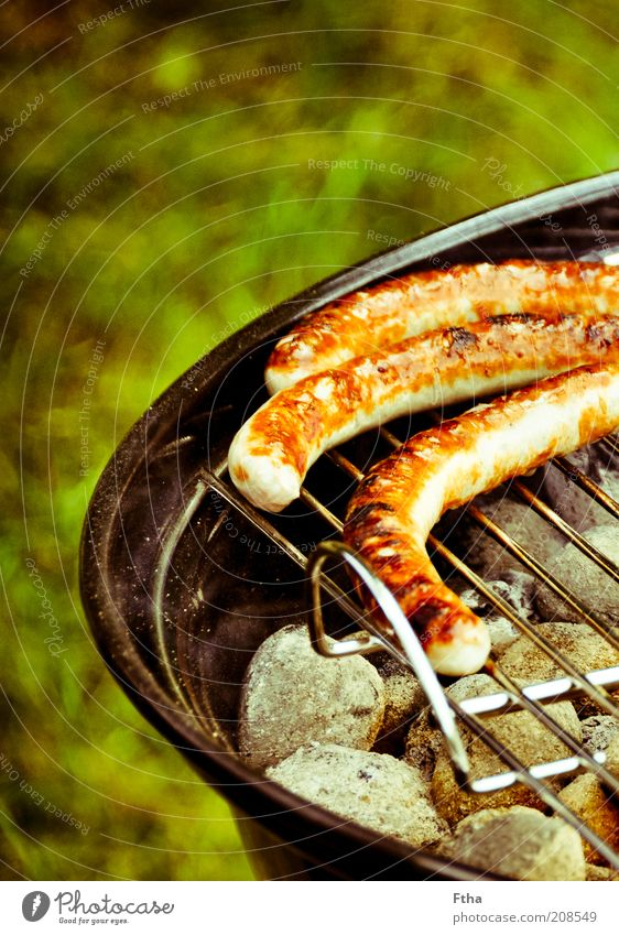 I'm about to go Food Sausage Barbecue (event) Grill Charcoal (cooking) BBQ season Barbecue area Bratwurst Small sausage Summer Feasts & Celebrations Fat Pork