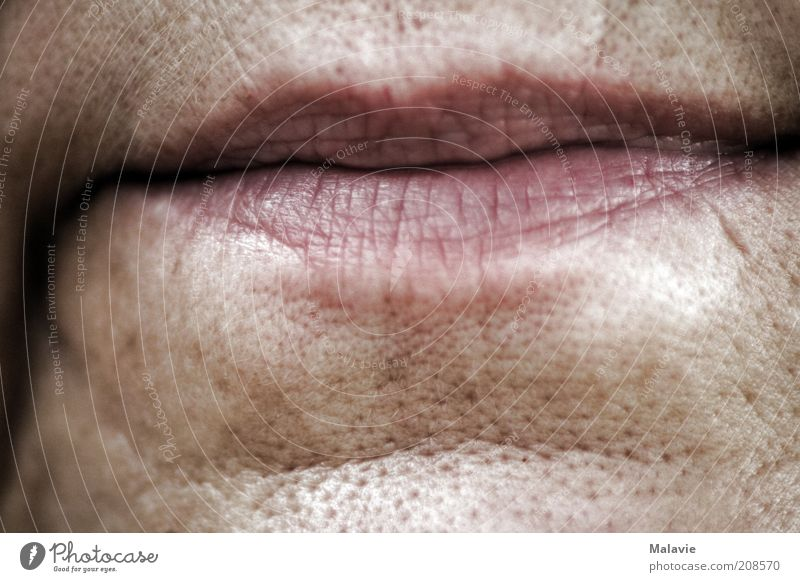 Human being Woman Old Adults Senior citizen Skin Natural Transience Lips Wrinkle 45 - 60 years Female senior Face Pore Detail of face Woman`s mouth