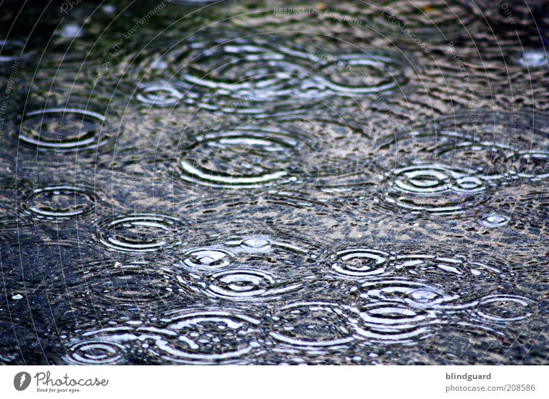 summer rain Water Drops of water Climate change Weather Bad weather Storm Rain Wet Blue Multicoloured Black Deluge Circle Colour photo Exterior shot Deserted