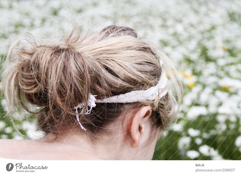 sea of flowers Hair and hairstyles Contentment Trip Summer Feminine Young woman Youth (Young adults) Head Ear Nature Flower Meadow Hairband Blonde Long-haired