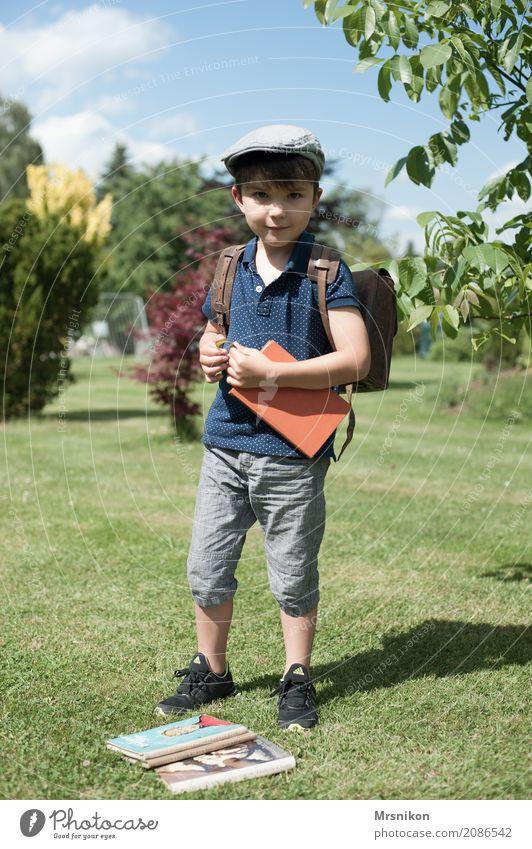 start of school Human being Masculine Child Toddler Boy (child) Infancy Life 1 1 - 3 years Sky Summer Beautiful weather Garden Park Meadow Hat Cap Beret Observe