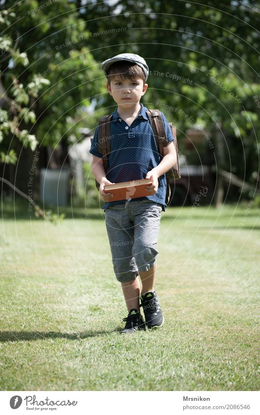 start of school Masculine Child Toddler Boy (child) Infancy 1 Human being 3 - 8 years Nature Summer Beautiful weather Garden Meadow Observe Walking Study