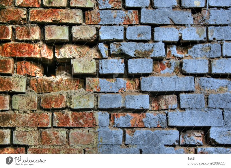 blue bricks House (Residential Structure) Architecture Wall (barrier) Wall (building) Old Blue Red Transience Brick Hollow Seam Plaster Broken Dye Paintwork