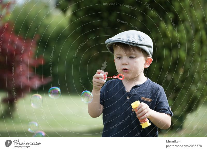 soap bubbles Child Toddler Boy (child) Infancy Life 1 Human being 1 - 3 years Cap Exterior shot Soap bubble Children's game Bubble Garden Beautiful Cute Looking