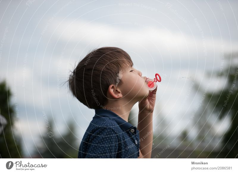 soap bubbles Human being Child Boy (child) Infancy Life 1 3 - 8 years Playing Soap bubble Brunette Exterior shot Happy Colour photo Copy Space top Day