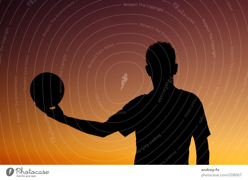 silhouette Masculine Man Adults Summer Ball Sphere Brown Yellow Red Black Volleyball Silhouette Sportsperson Athletic Volleyball player Ball sports Upper body