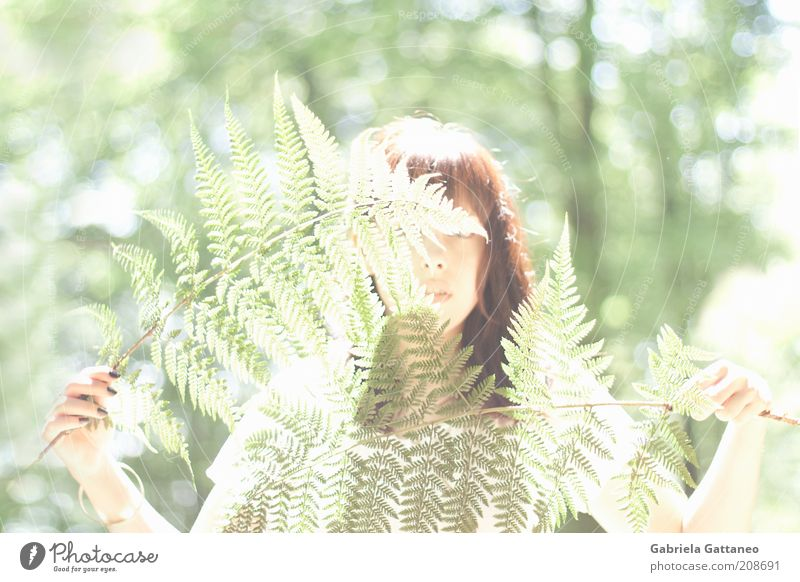 light cage Feminine Nature Plant Fern Bright Green Colour photo Exterior shot Hide Concealed Unidentified Timidity Young woman Woman 18 - 30 years Mysterious