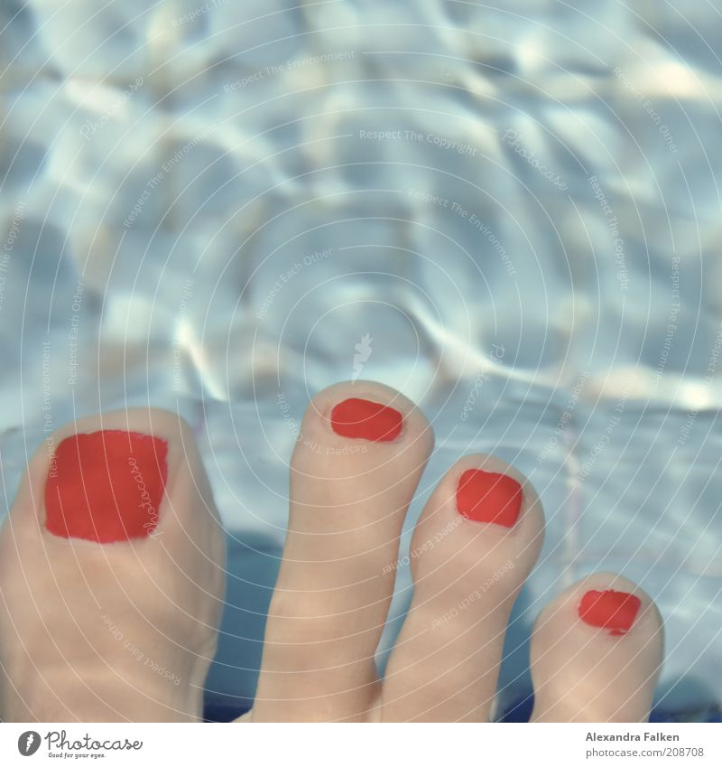 Blue Water Red Relaxation Feet Swimming & Bathing Swimming pool Tile Toes Cosmetics Underwater photo Spa Nail polish Varnished Human being 4