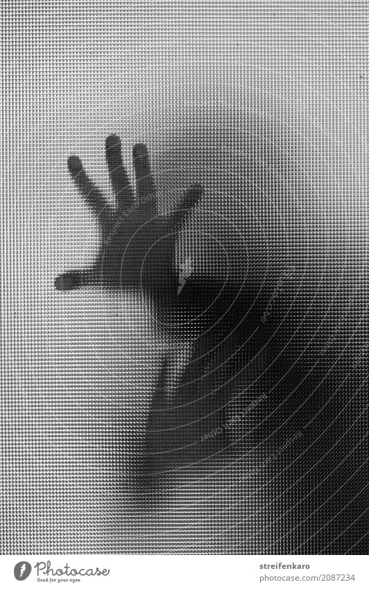 Human silhouette behind a glass pane, hands touching the pane Woman Adults Man Hand 1 Human being Glass Touch Fight Argument Aggression Esthetic Threat Dark