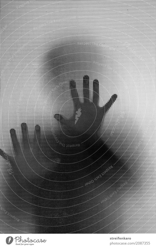 Human silhouette behind a glass pane, hands touching the pane Human being Woman Adults Man Hand 1 30 - 45 years Glass Touch Aggression Esthetic Threat Dark