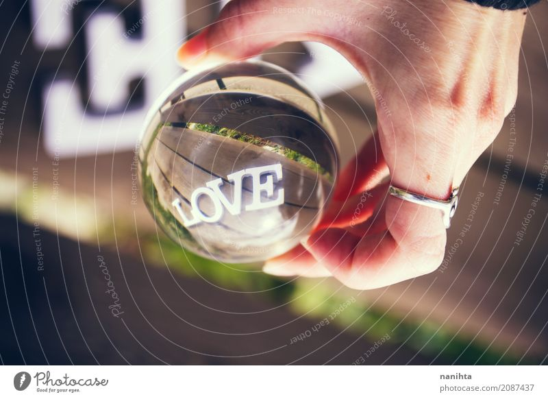 Word LOVE viewed through a crystal ball Human being Nature Youth (Young adults) Hand 18 - 30 years Adults Life Lifestyle Love Emotions Feminine Wood Art Happy