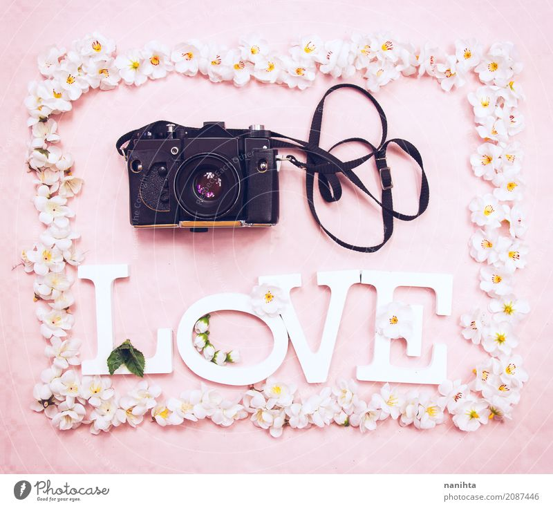 Floral frame with the word LOVE and an analog camera Leisure and hobbies Handcrafts Art Artist Culture Youth culture Photography Photographer Camera Analog