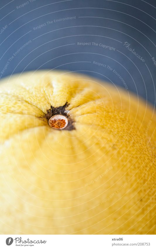 Nutrition Orange Food Fruit Delicious Lemon Dessert Citrus fruits