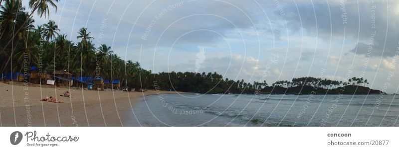 Clouds in Paradise (Panorama India) Palm tree Summer Beach Green Physics Arabian Sea Infinity Goa Bay Sun Virgin forest Warmth Hide Paradise Beach Palolem Beach
