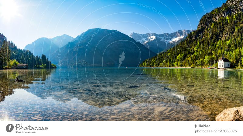 Plansee in Austria in the morning Relaxation Calm Vacation & Travel Sun Beach Mountain Nature Landscape Water Sky Cloudless sky Spring Beautiful weather Forest