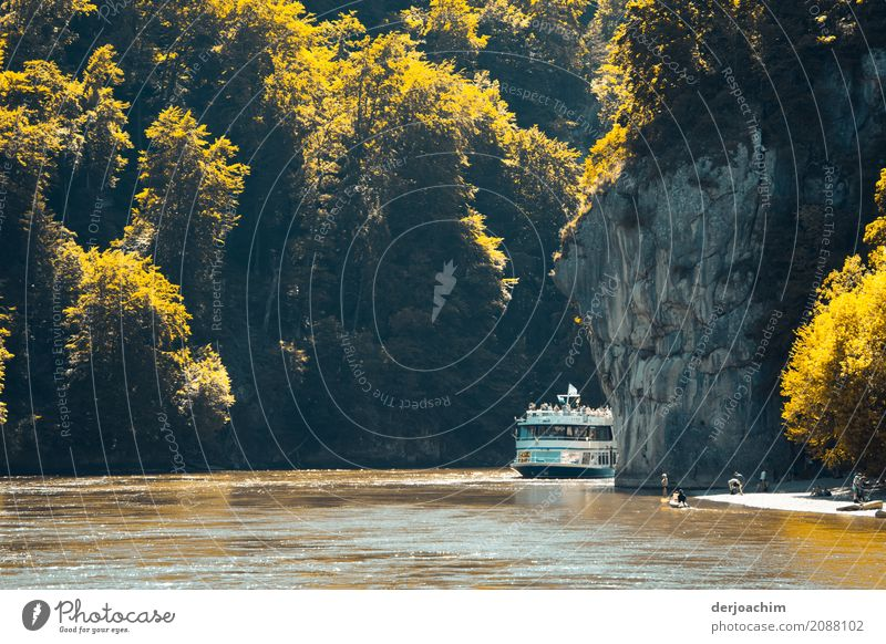 A ship comes around the Danube narrows. On the right big rocks, on the left rocks and small trees and bushes illuminated by the sun. On the way to Weltenburg Monastery