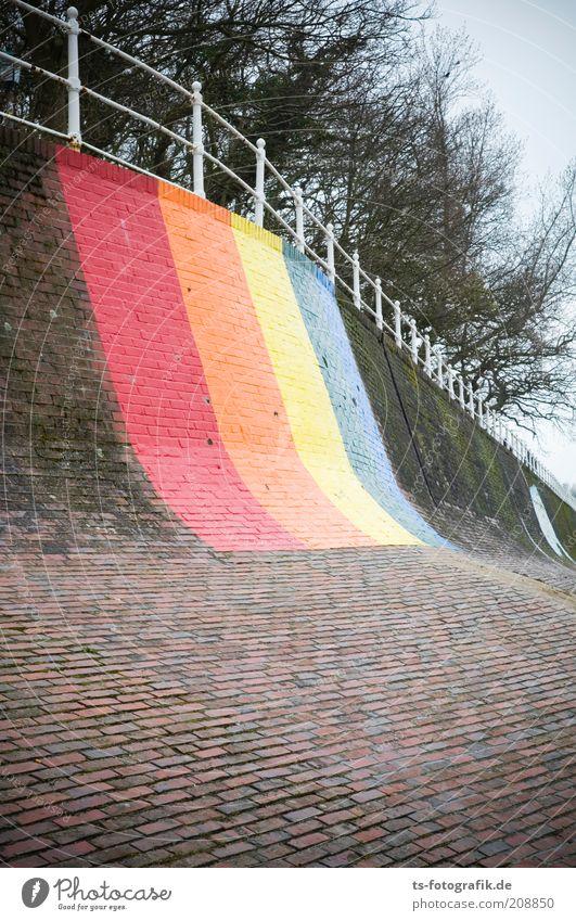 Tree Plant Beach Vacation & Travel Colour Stone Coast Tourism Protection Brick Landmark Exotic Banister Rainbow Homosexual