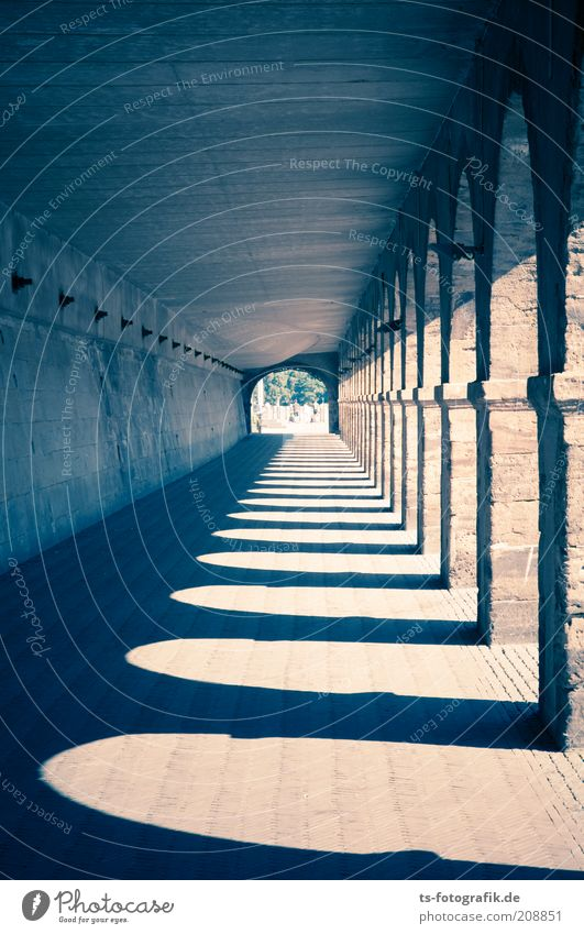 Blue Dark Wall (building) Stone Wall (barrier) Lanes & trails Brown Architecture Facade Perspective Bridge Esthetic Gloomy Under Tunnel Manmade structures